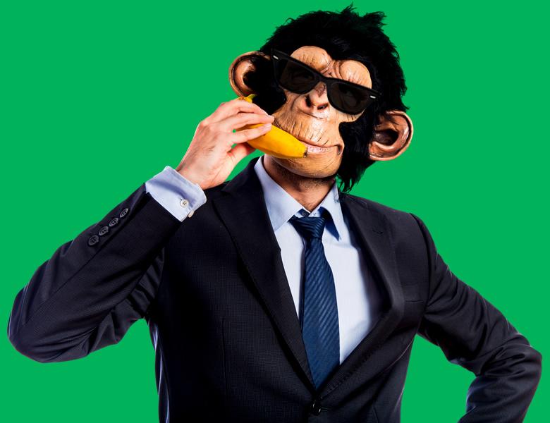 Mr. Ape - Contacto