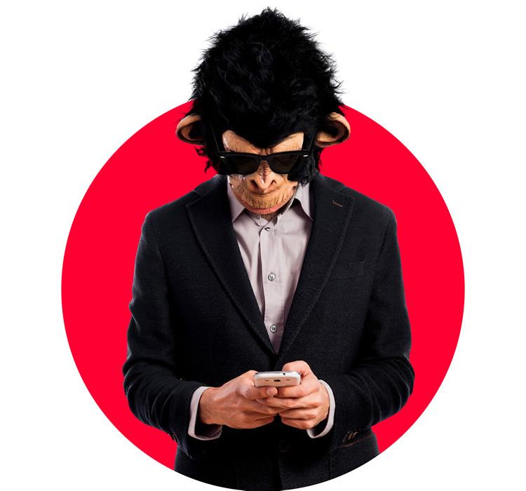 Mr. Ape - Responsive