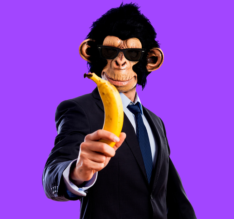Mr. Ape - Servicios de Marketing