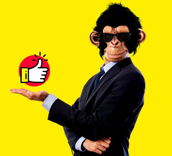Mr. Ape - Social Media Marketing